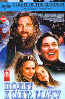DVD Полет к Санта Клаусу / Flight of the Reindeer / The Christmas Secret