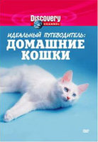 Discovery: ��������� ������������: ����� (DVD) / Ultimate Guide. House Cats