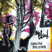 LP The Used. Shallow Believer (LP)