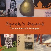 LP Spock's Beard. The Kindness Of Strangers (LP)