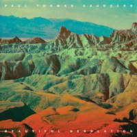 LP Paul Thomas Saunders. Beautiful Desolation (LP)