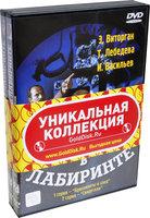 Долгий путь в лабиринте (2 DVD)